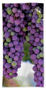 Grape Bunches Portrait Beach Towel