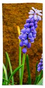 Grape Hyacinth And Sandstone  Beach Towel