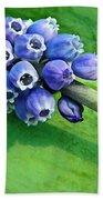 Grape Hyacinth Spike  Beach Towel