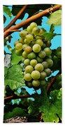Grapes Of Wachau Beach Towel