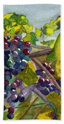 Grapevines Beach Towel