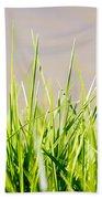Grass Blades Beach Towel