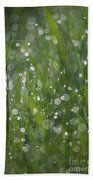 Grass Fairies... Beach Towel