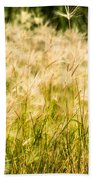 Grass Feathers Beach Towel