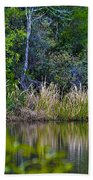 Grass On The Water Beach Towel