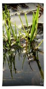 Grasses In Water Beach Towel