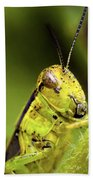 Grasshopper Macro 9402 Beach Towel