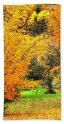 Grassy Autumn Road Beach Towel