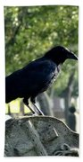 Graveyard Bird On Top Of A Tombstone Beach Towel