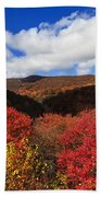 Graveyard Fields In The Mountains Beach Towel