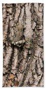 Gray Tree Frog Beach Towel