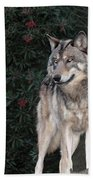 Gray Wolf Endangered Species Wildlife Rescue Beach Towel