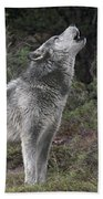 Gray Wolf Howling Endangered Species Wildlife Rescue Beach Towel