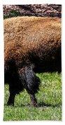 Grazing In The Grass Beach Towel by Robert L Jackson