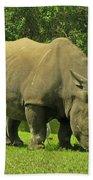 Grazing Rhino Beach Towel