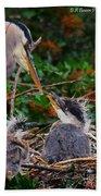 Great Blue Heron Family Beach Towel