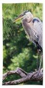 Great Blue Heron I Beach Towel