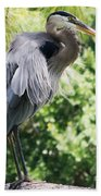 Great Blue Heron IIi Beach Towel