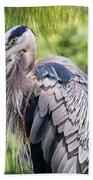 Great Blue Heron Iv Beach Towel