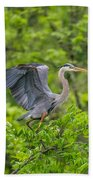 Great Blue Heron Landing Beach Towel