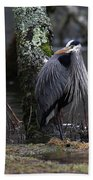 Great Blue Heron On The Clinch River Beach Towel