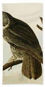Great Cinereous Owl Beach Towel