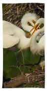 Great Egret 2am-7177 Beach Towel