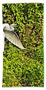 Great Egret Flying Over Rapti River In Chitwan Np-nepal Beach Towel