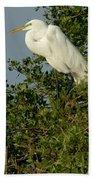 Great Egret In A Tree Beach Towel