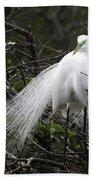Great Egret In Tree Beach Towel