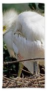 Great Egret Beach Towel