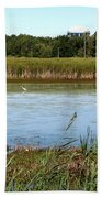 Great Egret On Berm Pond At Tifft Nature Preserve Buffalo New York Beach Towel