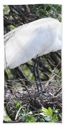Great Egret On Nest Beach Towel