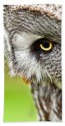 Great Gray Owl Close Up Beach Towel