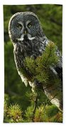 Great Grey Owl On The Hunt Beach Towel