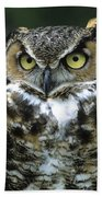 Great Horned Owl At Rest Beach Towel