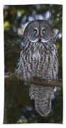 Great Owl Eyes Beach Towel