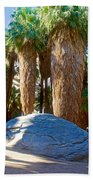 Great Sliding Rock In Lower Palm Canyon In Indian Canyons Near Palm Springs-california Beach Towel