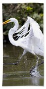 Great White Egret And Turtle Friends1 Beach Towel