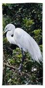 Great White Egret Building A Nest Viii Beach Towel