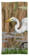 Great White Egret By The River Too Beach Towel