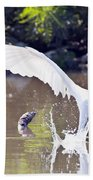 Great White Egret Fishing Sequence 2 Beach Towel