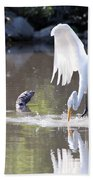 Great White Egret Fishing Sequence 4 Beach Towel