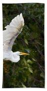 Great White Egret Flying 1 Beach Towel