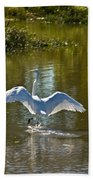 Great White Egret In Sunlight Beach Towel