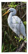Great White Egret In The Wild Beach Towel