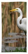 Great White Egret Taking A Stroll Beach Towel