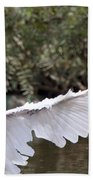 Great White Egret Wingspan1 Beach Towel