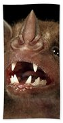 Greater Spear-nosed Bat Beach Towel