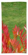 Green And Red Beach Towel